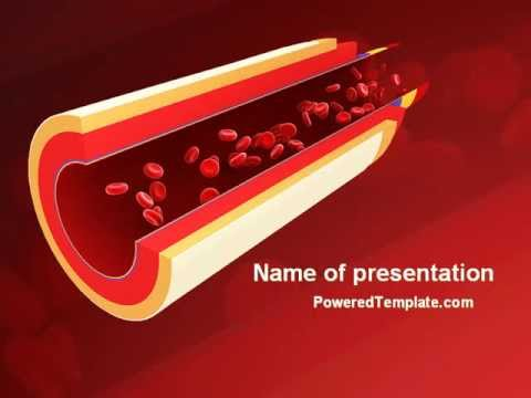 blood flow powerpoint template by youtube