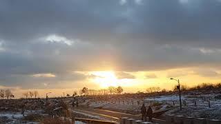 취준생vlog. 12월 하늘공원/1월의 해돋이/대전시험
