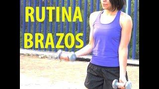 rutina brazos biceps triceps pecho espalda y hombros
