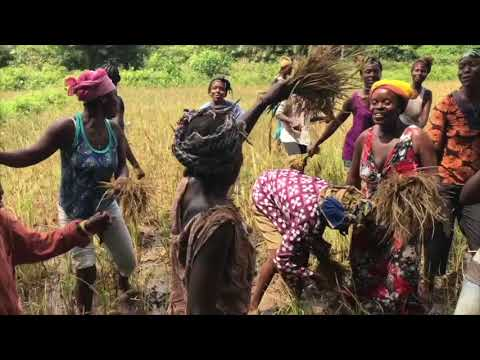 Sustainable Village Development Program - Sierra Leone Nov 2017