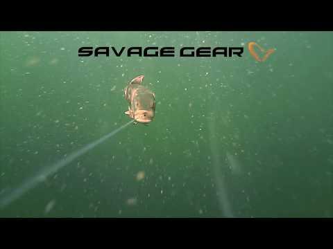 Savage Gear 4D Line Thru Pike
