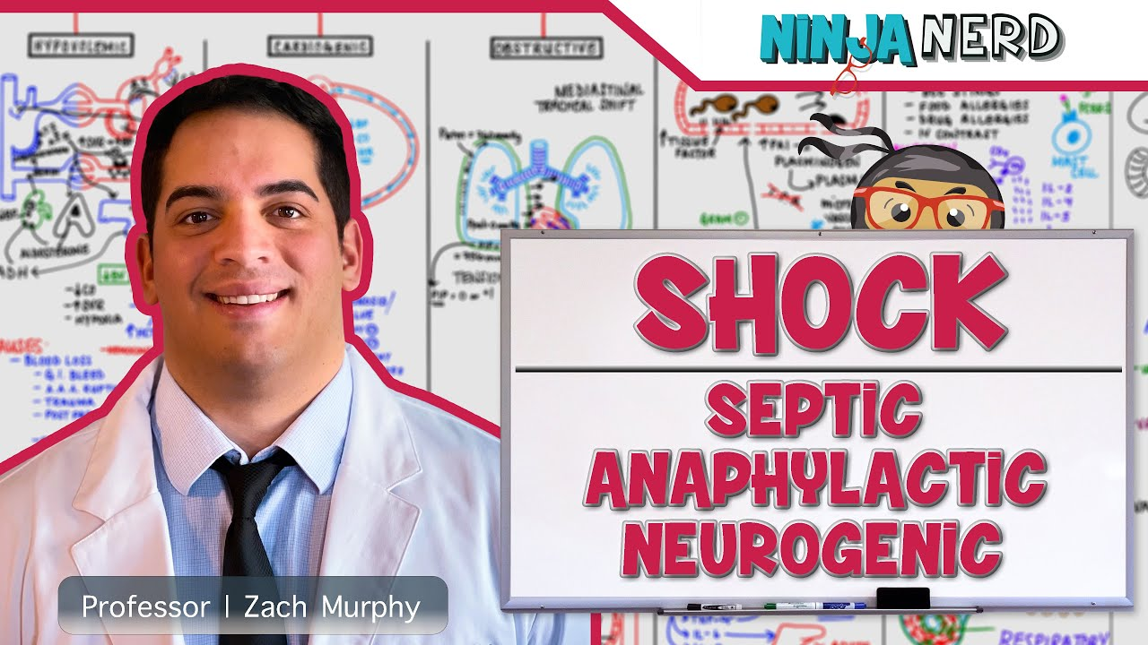 Download Cardiovascular  Types of Shock   Septic, Anaphylactic, & Neurogenic Shock