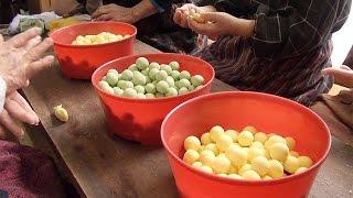 色鮮やかに涅槃だんご作り 富山県射水市の大楽寺で檀家の女性ら