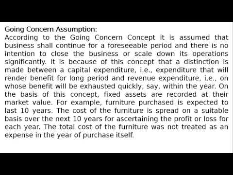 Class XI - Chapter 3 - Theory Base of Accounting - Going Concern Concepts By S. K. Ray
