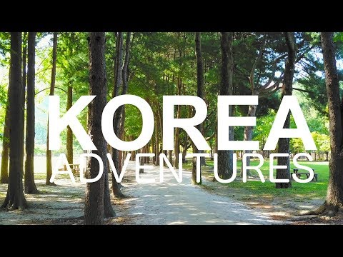 Korean Adventures | Travel Vlog