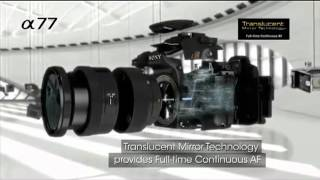 SONY A77 (SONY Alpha SLT-A77) 24.3MP Translucent   Mirror Digital SLR Camera Information