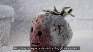 Lấy lại hương thơm cho Dâu Tây   Samsung Twin Cooling Plus