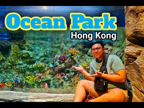 ocean-park-hong-kong-|-travel-guide-|-pinoy-vlog-|-arcjade-vlogs