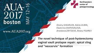 "AUA 2017. Post-hysterectomy vaginal vault prolapse repair: apical sling and ""neocervix"" formation"