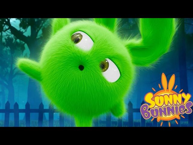 Sunny Bunnies - SUNNY BUNNIES IN THE NIGHT