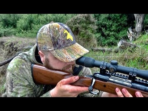 #waikarimoana Hunting Fallow Deer With 223 Rifle, Neck Shot For Venison In New Zealand # 199