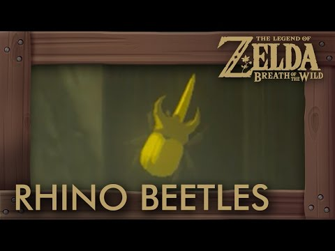 Zelda Breath of the Wild - How to Farm Energetic Rhino Beetles (Wild Set Upgrade Material)