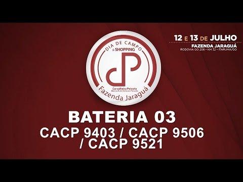 LOTES 46,47,48-BATERIA 03 (CACP 9403/CACP 9506/CACP 9521)