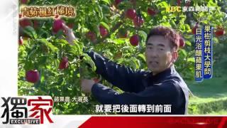 提到日本青森,很多人第一個聯想的就是青森蘋果,這裡的蘋果年產量接近5...