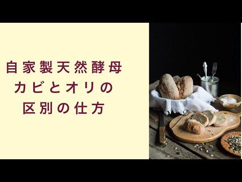 【自家製天然酵母】カビとオリ、しっかり見分けられますか? フルーツ酵母 自家製天然酵母 パン教室 教室開業 大阪 奈良 東京 福岡 名古屋