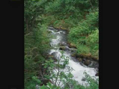 Seaward (Alaska)2006 3