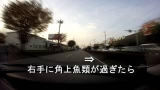 首都高新井宿出口より