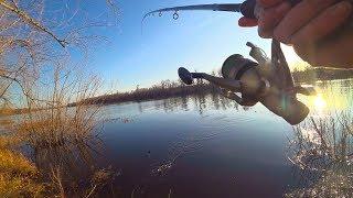Только успевай таскать! Рыбалка 2019 на фидер перед первым льдом. Ловля плотвы на фидер.