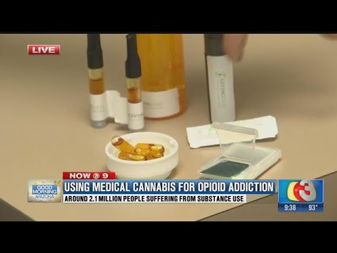 Medical cannabis used to treat opioid addicts