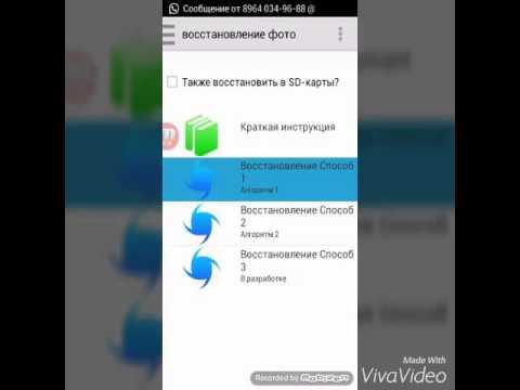 Официальный сайт радиорынка царицыно радиорынок в