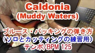 ギター初心者講座!Caldonia(Muddy Waters)のブルース・バッキング/ソロとカッティング練習用 テンポ125