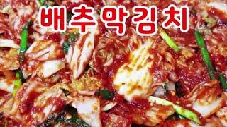 배추막김치~ 김치의혁명~ 1시간만에 김치를담근다?  배…