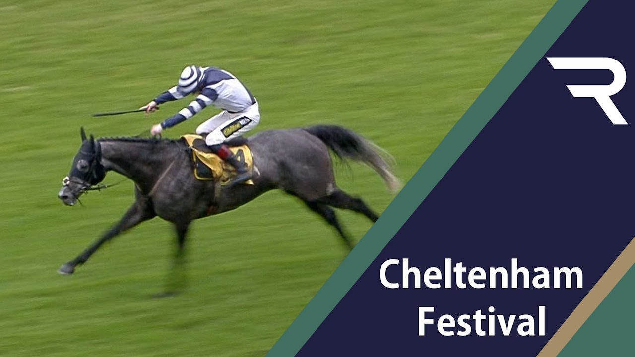 Cheltenham Preview - Sky Bet Supreme Novices' Hurdle - 2019 - Racing TV