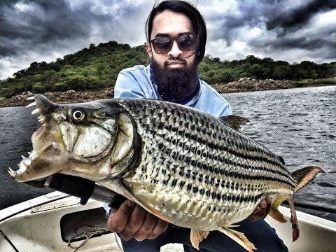 Cahora Bassa Tiger Fishing 2018