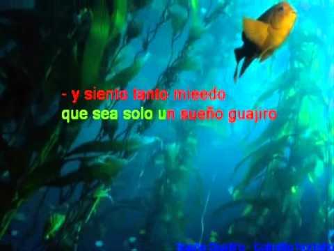 Sueño Guajiro   Colmillo Norteño   Karaoke ads