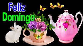 Primer Saludito de Buenos Dias feliz Domingo Este mensaje Lindo es Para ti video bello