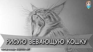 Как нарисовать кошку с открытым ртом поэтапно шаг за шагом карандашом