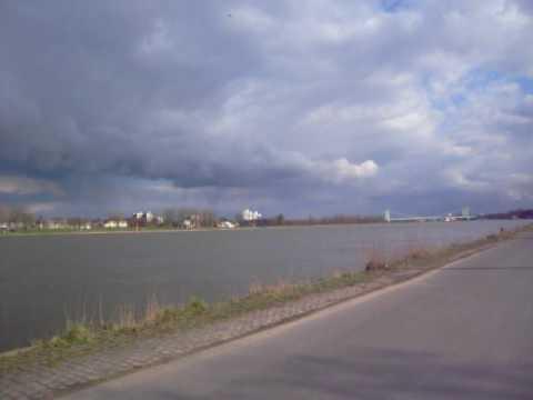 Rhein domingo
