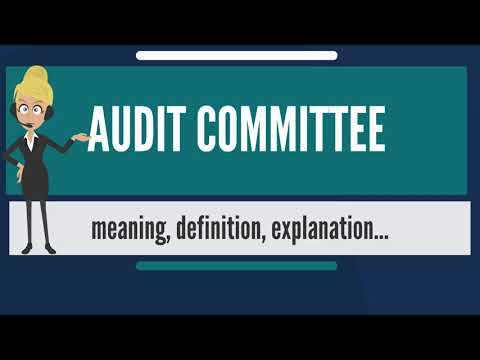 What is AUDIT COMMITTEE? What does AUDIT COMMITTEE mean? AUDIT COMMITTEE meaning & explanation