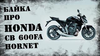 Байка про HONDA CB 600 FA Hornet / Обзор мотоцикла HONDA CB 600 FA Hornet(Обзор мотоцикла HONDA CB 600 FA Hornet от Тракториста Байки от Тракториста продолжаются. Подписывайтесь, комментиру..., 2014-08-17T20:22:45.000Z)