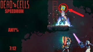 I beat my insane damage run ! [Dead Cells speedrun - 1.5 Any% - 7:12]