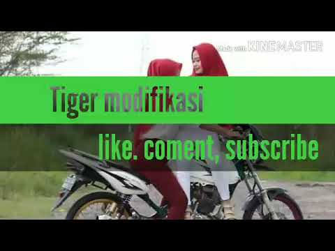 TIGER MODIFIKASI... Kumpulan modifikasi Honda Tiger Revo racing herex