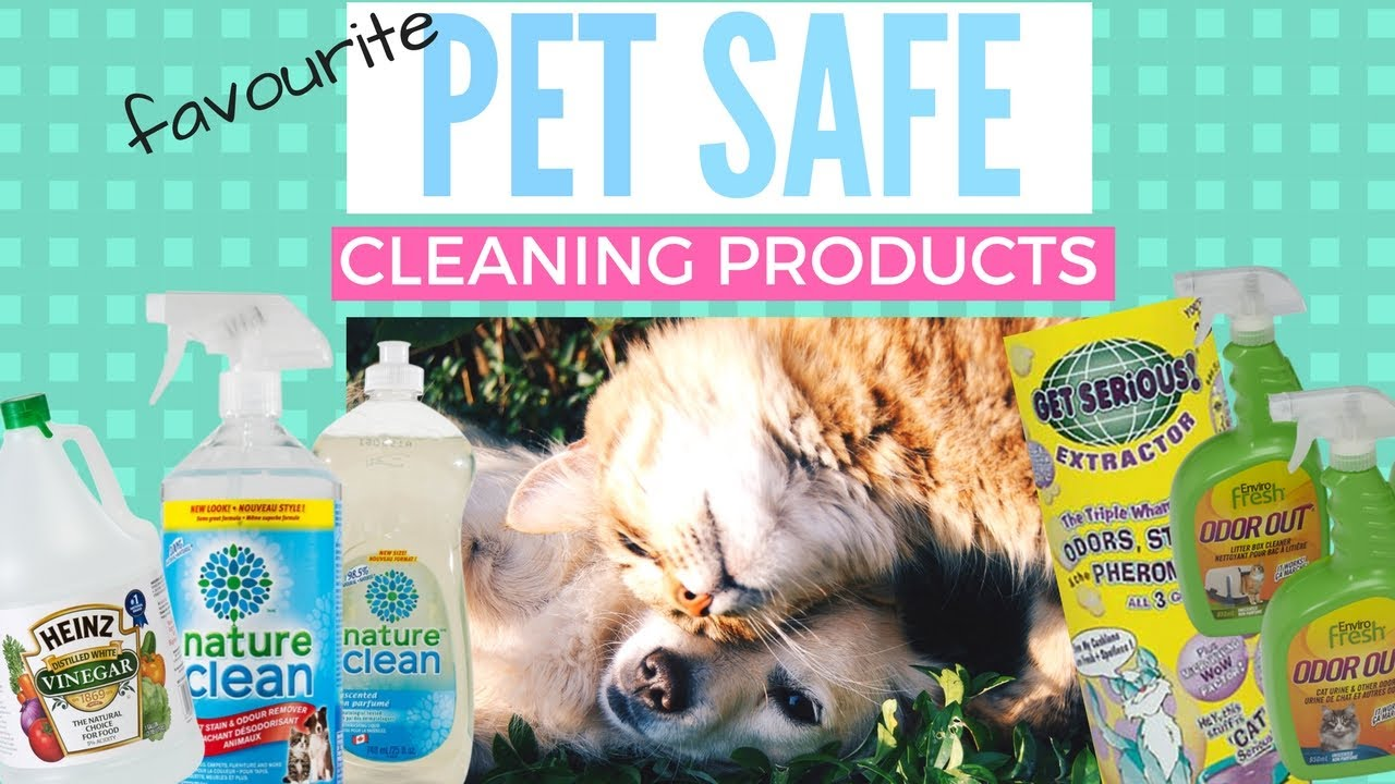 Question Is Fabuloso Pet Safe 2020