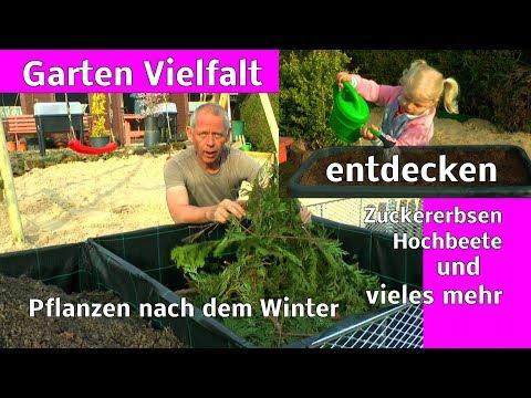 Die Garten Vielfalt entdecken auch mit Kindern Papa zeigt einiges in der Entwicklung im Garten Teil1