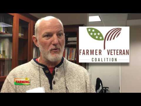 Virginia Farming: Trends in the Virginia Cattle Industry