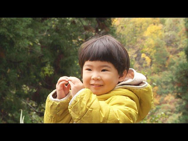 里山に移住した人々を追ったドキュメンタリー!映画『風の波紋』予告編
