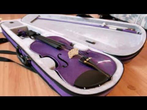 Purple Violin stirs up controversy at school