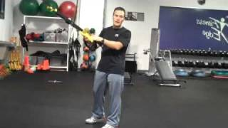 trx supported squats