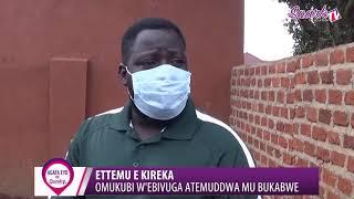 ETTEMU: Omukubi w'ebivuga atemuddwa mu bukambwe