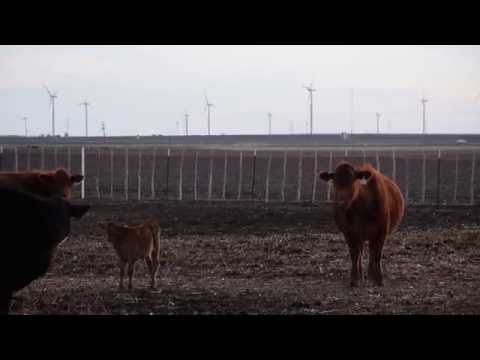 AWEA Wind Power 101: Community Benefits