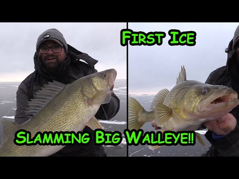 Ice Fishing EARLY Ice For GIANT Walleyes!! (Back To Back!!)