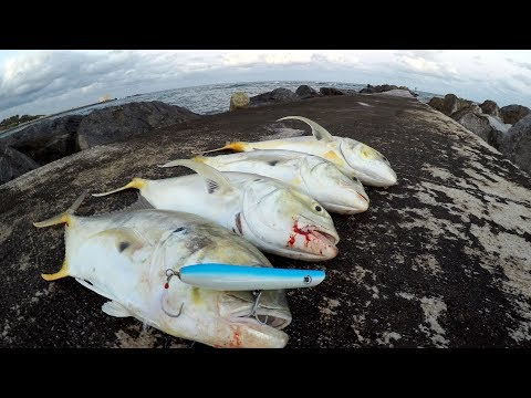 Fish CANNOT Resist This LURE! -Jetty Fishing Florida