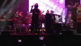 Janam Janam (Dilwale) - Arijit Singh live in the Netherlands 2016