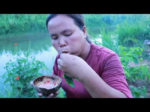 Survival In The Rainforest - Found Snails & Fish Switch Head Cow - Eating Delicious HD