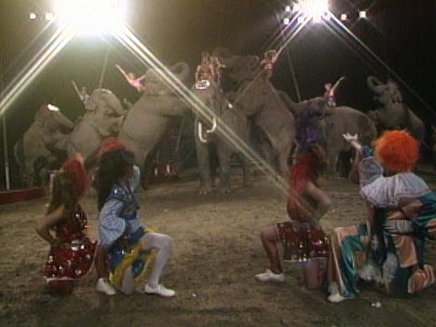 A Day at the Circus - YouTube