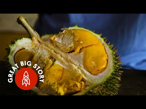 Durian Fruit: A Smell So Rotten, but a Taste So Sweet